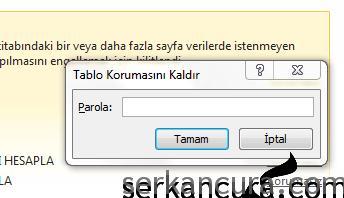 Excel'de Sayfa Korumalarını Hackleme