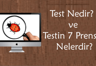 Yazılım Test Günlüğü: Test Nedir?
